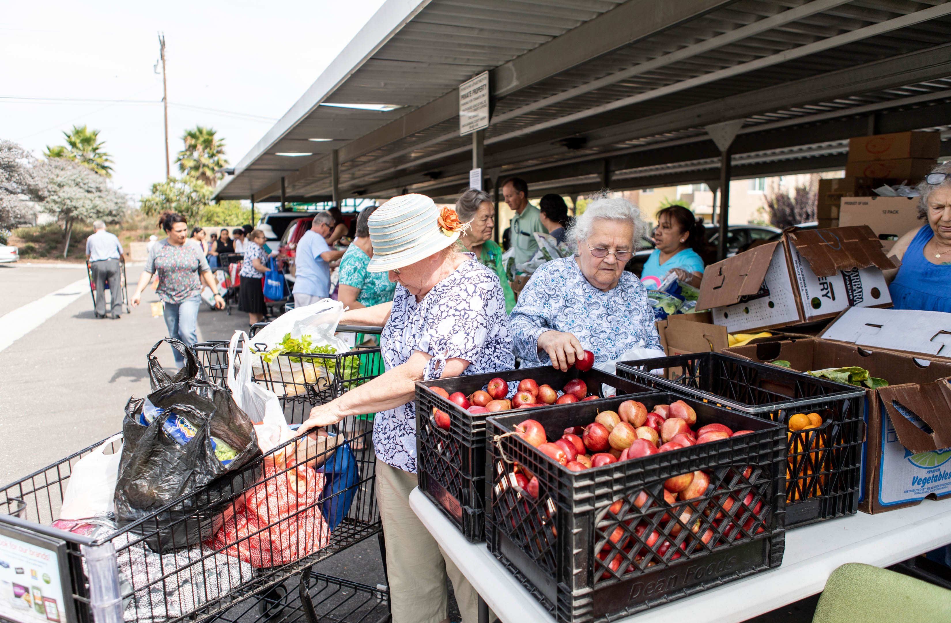 Community members attend a monthly Foodbank distribution event.